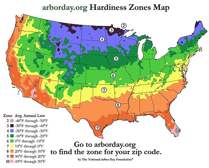 tree-zones-arbor-day